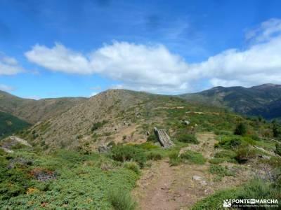 Hayedo Montejo-Cuerda Pinilla; viajes mayo fotos senderismo grupos de trekking